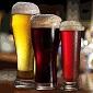 Chute a vône piva - 18. Fenolické - Fenoly (0500)
