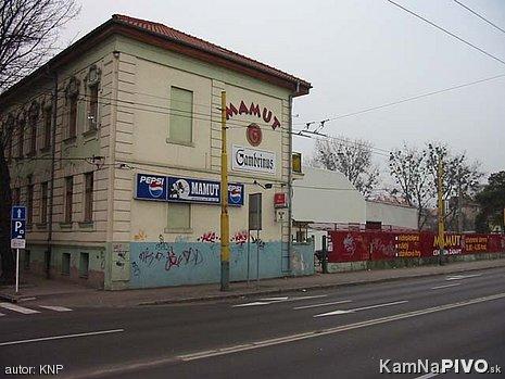 Mamut Košice